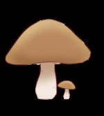 【アイテム・オブジェクト】きのこ 茸 毒キノコ 2パターン
