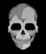 【アイテム・オブジェクト】ドクロ 骸骨 透過素材 2パターン