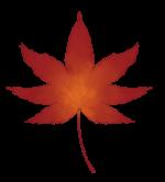 【アイテム・オブジェクト】紅葉 もみじ 楓 透過素材 2パターン