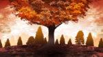 【背景】大木の背景 紅葉