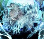フェンリル 白狼 透過素材 複数パターン