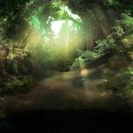 【背景】光り差す林道の背景