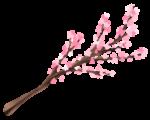 【アイテム・オブジェクト】桜の枝 透過素材