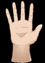 【オブジェクト】手・腕「手のひら」「手を挙げる」 透過素材