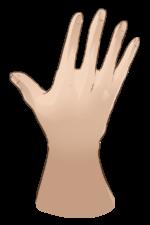 【オブジェクト】手・腕「押さえる」「触れる」 透過素材